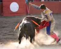 Petition: Anti-Bullfighting City Forced to Host Bullfight since it is part of a cultural heritage.  Child sacrifice is also a part of a certain cultural heritage ...why not demand the right to kill children?