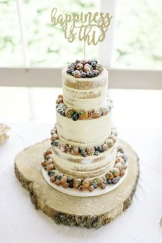 Semi Naked Wedding Cake - Phase Eight Wedding Dress For A Relaxed Intimate Wedding At Hexham Winter Gardens With Images by Sarah Jane Ethan Photography
