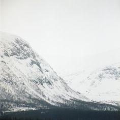 Jon Nensén