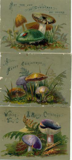 Victorian mushroom Christmas cards
