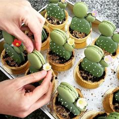 Have any green macarons on hand? Try out these adorable cacti macaron tarts by… Cake Cookies, Cupcake Cakes, Cup Cakes, Macaroon Cookies, Cupcake Toppers, Just Desserts, Dessert Recipes, Green Desserts, Macaroon Recipes