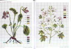 Мешочки для растений, листьев и плодов. Обсуждение на LiveInternet - Российский Сервис Онлайн-Дневников