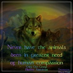 Native American Quotes for Facebook | native american quotes about wolves | Visit facebook.com