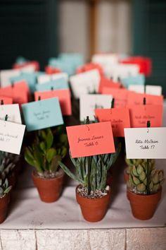 succulent table favors