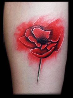 26bf87e76 Poppy tattoo by Tyler. Limited availability at Redemption Tattoo Studio.  Salvation Tattoo, Poppies