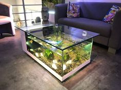 Awesome 9 Creative Living Room Design With Coffee Table Fish Tank Ideas Tables and aquariums are very different home interiors. Of course, a table is an object that must be provided and placed in the living room as a place. Wall Aquarium, Aquarium Stand, Home Aquarium, Aquarium Design, Aquarium Ideas, Fish Tank Coffee Table, Fish Tank Design, Amazing Aquariums, Aquarium Decorations