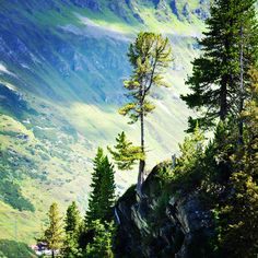 auf! Mountains, Nature, Travel, Voyage, Viajes, Traveling, The Great Outdoors, Trips, Mother Nature