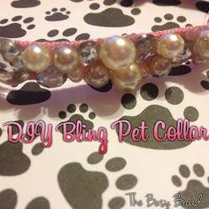 DIY Bling Pet Collar