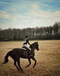 A canter cures every evil.