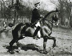 Otto Lorke 1909