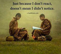 Photograph Novice Monks Studying the Bible during the rainy season. by Jakkree Thampitakkul on Buddha Buddhism, Buddhist Monk, First Love Quotes, Buddhist Quotes, Rainy Season, Spiritual Wisdom, Positive Affirmations, Belle Photo, Motivation