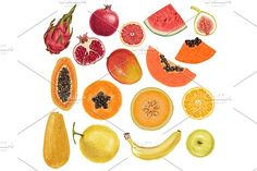 Too good to be fruit. - Illustrations apple, apricot, avocado, background, banana, berry, cherry, color, delicious, design, doodle, dragon, drawing, drawn, exotic, food, fresh, freshness, fruit, fruits, grape, grapefruit, guava, hand, healthy, icon, isolated, juice, juicy, lemon, lychee, mango, natural, orange, organic, papaya, passion, peach, pear, pineapple, set, sketch, summer, tropical, vegetarian, vitamin, watermelon, white, drawing, painting, sketch, how to, idea, rainbow, color…