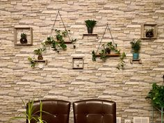 Jen's wall Rustic, Traditional, Living Room, Wall, Plants, Home, Country Primitive, House, Ad Home