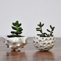 Hottest Pictures Ceramics Pottery pinch pots Ideas off both my shops through Saturday – so get your Mom (and yourself) something awesome! Ceramic Pinch Pots, Ceramic Planters, Ceramic Clay, Ceramic Pottery, Clay Pinch Pots, Porcelain Ceramic, Slab Pottery, Pottery Vase, Ceramic Vase