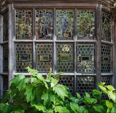 Wightwick Windows