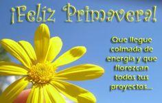 #FelizDomingo #Feliz Privavera que llegue colmada de frases proZesa Welcome Spring, Morning Quotes, Spanish, Blog, Festiva, Facebook, Chocolates, Angels, Articles