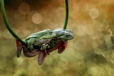 Hey...I here for you by Yusri Harisandi on 500px