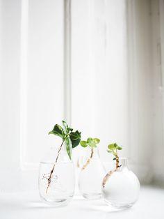 Mini vase // photo: storiesbyme.se