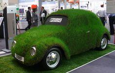Who's got a grass car ..