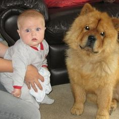 """The masters of the """"I just pooped"""" face.   27 Kids Who Look Like Their Doggy BFFs"""