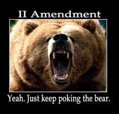 II A....poke the Bear