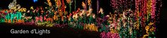 Garden D'Lights at Bellevue Botanical Garden are not to be missed!  Check them out November 24 through December 31, 2012.