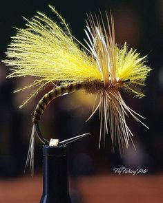 Yellow cdc emerger. #flyfishing #flytying #flytyingaddict #flytyingjunkie #fluebinding #flugbindning #torrfluga #flyfish #tying #troutfishing #troutcandy #tyingflies #barbless #moonlitflyfishinghooks #whitingfarms