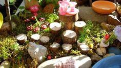 Fairy Garden Feature :: 2013 :: Seven - The Magic Onions