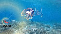 PADI DIVE RESORTS - S25171
