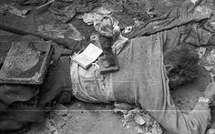 Köztársaság tér, holttest a pártházból kihordott holmikkal takarva. Budapest Hungary, Eastern Europe, Revolution, War, World War Two, Historia