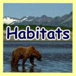 So awesome! A portal with links to so many interactives and research sites about animals: habitat, birds, pets, info, and rainforest