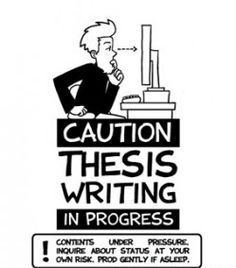 Professional thesis writer