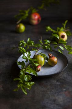 Pomegranates by Nadine Greeff Photography Fruit And Veg, Fruits And Veggies, Fresh Fruit, Food Photography Styling, Food Styling, Life Photography, Food Design, Raw Food Recipes, Food Pictures
