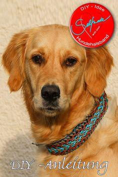 Ein wirklich cooles Geschenk für alle Hundeliebhaber - dieses selbst gefertigtes Hundehalsband aus Paracord ist ein echter Hingucker!