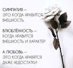 The Words, Cool Words, Wise Quotes, Book Quotes, Inspirational Quotes, Motivational, Teen Dictionary, Russian Quotes, Gemini And Aquarius