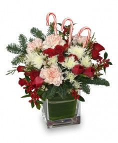 Tall Vase  Foliage: Seasonal Evergreens, Variegated Aspidistra Leaf  Red Tulips  Red Spray Roses  White & Red Peppermint Carnations  White Snowflake Poms  White Waxflowers  Red Berry Clusters  Candy Canes