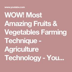 WOW! Most Amazing Fruits & Vegetables Farming Technique - Agriculture Technology - YouTube