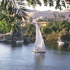 feluccas,  old fishing boats, became a fun way to party on the Nile