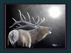 Canvas print Matted in plastic sleeve signed and numbered 1 thru 5  By Bill Cullum - Print is produced from a scratch board Original  Art Work of a Big bull Elk bugling in the moonshine mist - LTD  Edition Print - Shipped with a Certificate Of Authenticity.