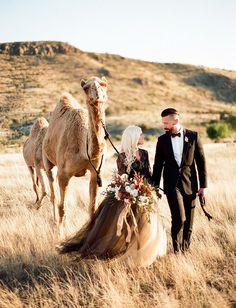 Marfa Inspiration with a camel