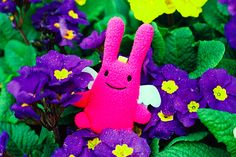 Angel Lapin by AngeLapin, via Flickr #bunnyinthewild