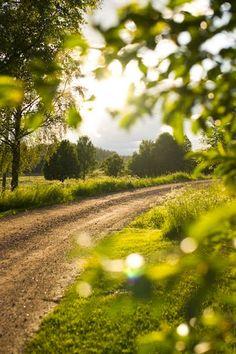 Back road (Sweden)