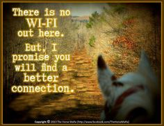 """""""There is no Wi-Fi out here. But, I promise you will find a better connection."""""""