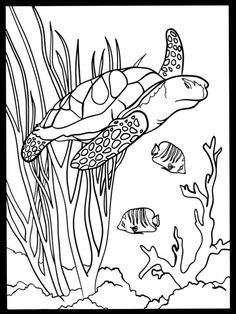 Sea Turtle Habitat Coloring Pages from Animal Coloring Pages category. Printable coloring images for kids you could print and color. Animal Coloring Pages, Colorful Drawings, Stained Glass Patterns, Turtle Painting, Turtle Coloring Pages, Surfboard Painting, Art, Mosaic Patterns, Color