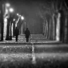 #myinstagram365proyect día066 paseando entre la #noche y la #niebla #aguilardecampoo #palencia #igerscyl #igerspalencia