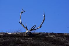 Up On The Housetop?