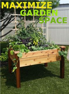 This elevated garden bed is an instant and manageable garden that can be placed almost anywhere. Excellent for patios, decks, condos, apartments or anywhere you would like to grow vegetables, herbs or flowers.