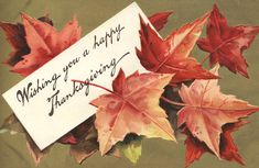 Free Images For Thanksgiving Happy Thanksgiving Images Happy Thanksgiving Day Images Free Thanksgiving Pictures Photos Pics Thanksgiving Card Messages, Happy Thanksgiving Images, Thanksgiving Greetings, Vintage Thanksgiving, Thanksgiving Activities, Thanksgiving Letter, Thanksgiving Holiday, Thanksgiving Quotes, Vintage Holiday