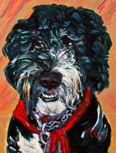 Izzy, (Acrylic, 5 x Pets, Animals, Animals And Pets, Animales, Animaux, Animal, Animais