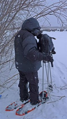 Filming bison and wolves in Wood  Buffalo National Park, Canada. ©Chadden Hunter 'Frozen Planet' #Wolves #Filming #BBC